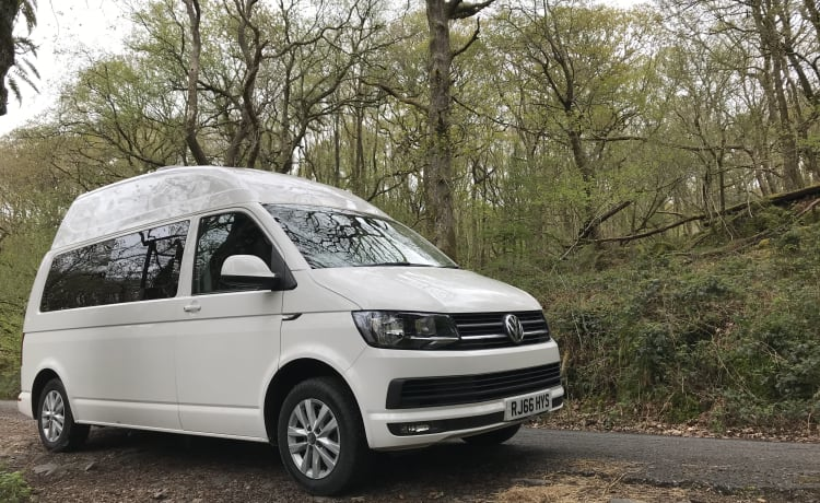 Alpina – T6 Camper ready for your adventures