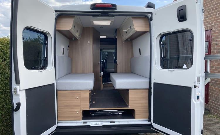 Camper Bus Sunliving