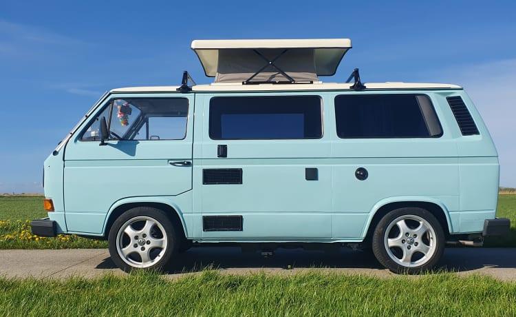 't blaue buske – Blue T3 camper