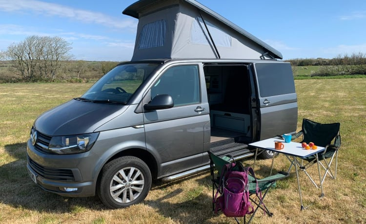 Gracie – VW T6 Campervan Top Spec and Brand New Conversion