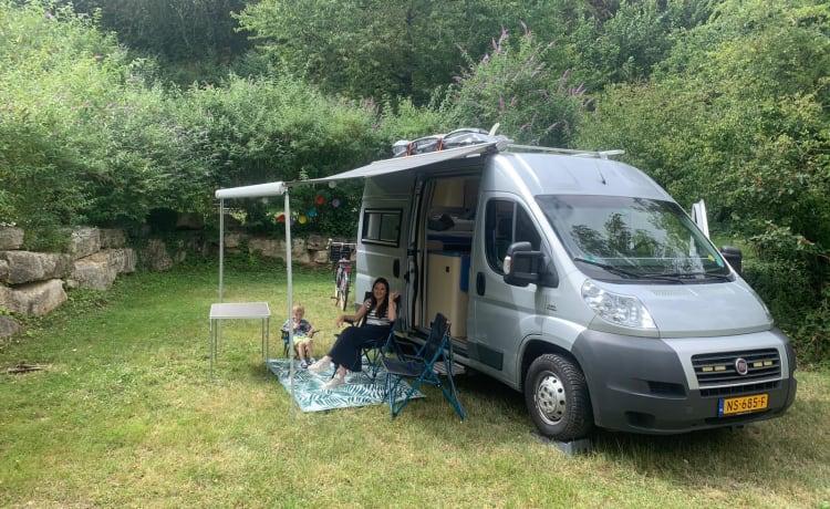 Fiat Ducato Professional self-build Bus camper