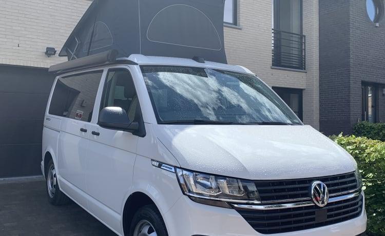 Volkswagen California T6.1 Beach 2021 – Nieuwe Volkswagen California Beach T6.1 2021 te huur