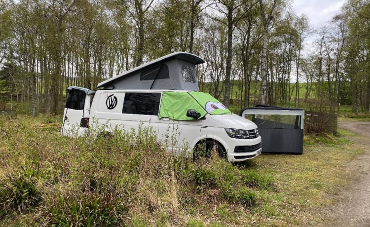 BEPE – VW T6 camper