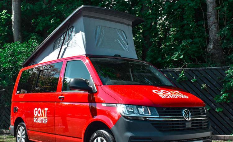 Lars – 2021 VW T6.1 Swamper Camper