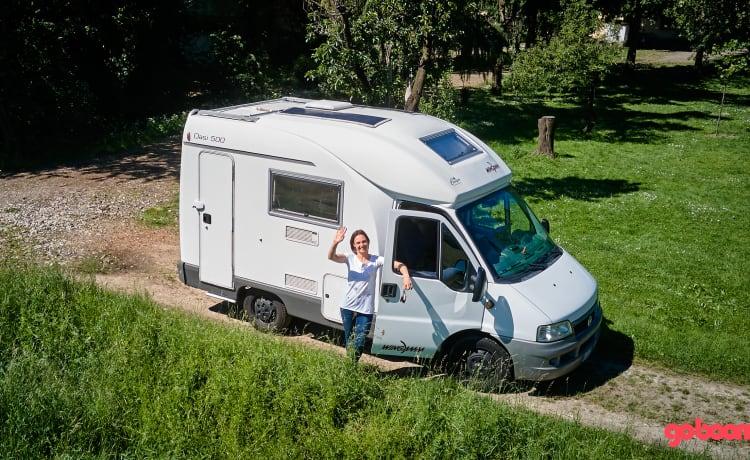 SHOONYA – Wingamm Oasis 500 - SHOONYA - dream trips!