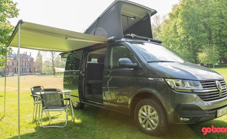 Huur je avontuur met deze legendarische camper – New Volkswagen California Coast T6.1 2021 for rent