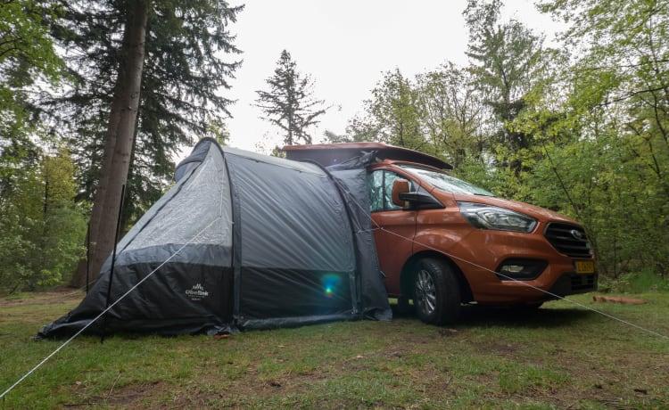 Kip Nugget – Jong Ford Nugget camperbusje