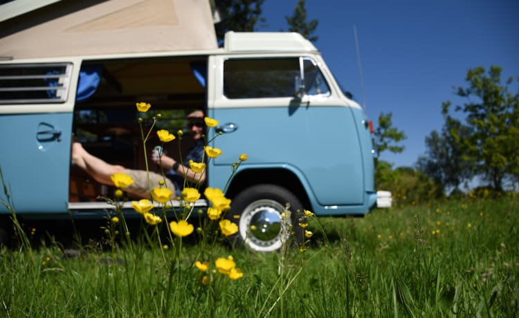 Woezel – Volkswagen bus T2 - a nod to the 1970s
