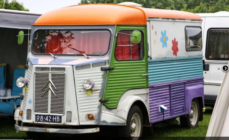 Retro, atmosphere and camper van