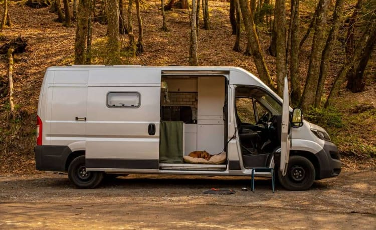 The Boxervan – Compact and cozy bus, ideal for any adventure!