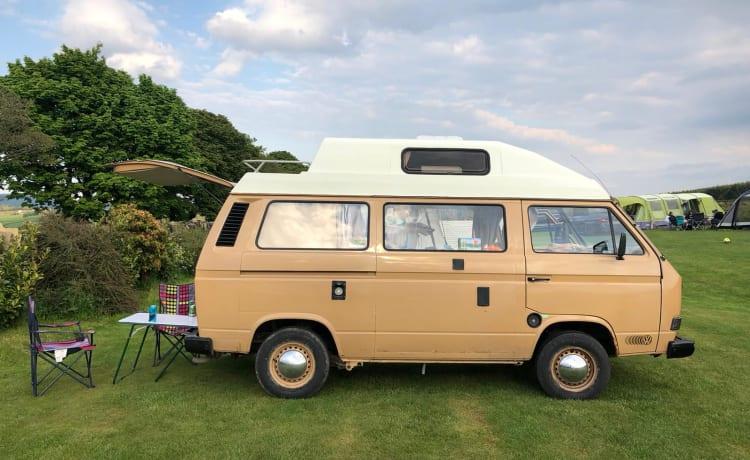 Irvine – 1984 VW T25 Autohomes