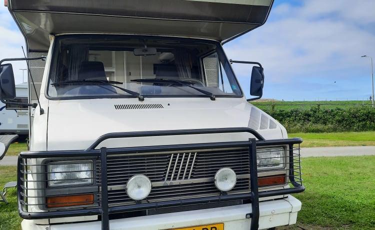 Super gave 5 pers Fiat Alkoof camper