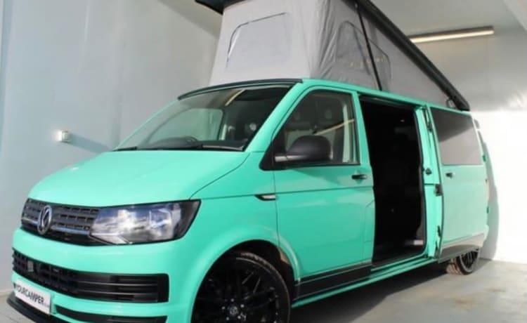 Wee Minty – Luxe VW T6 campervan voor UK Adventures
