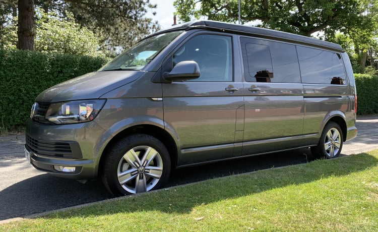 The Grey Wanderer – The Grey Wanderer - VW T6 4-persoons campervan - Automatisch