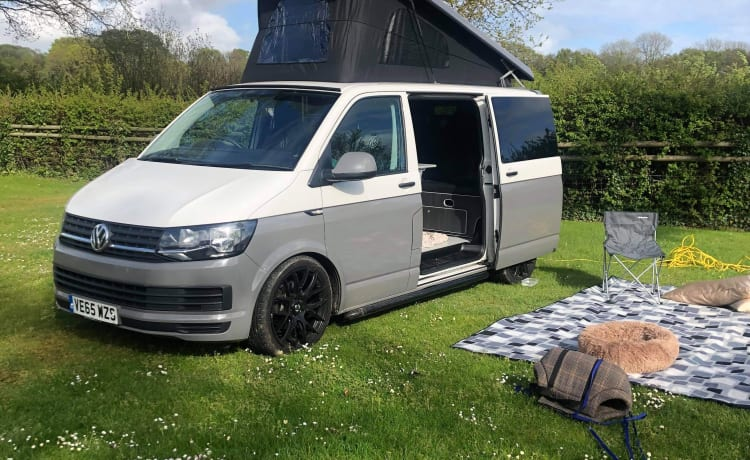 Ivy – Pet friendly recently converted VW T5 campervan