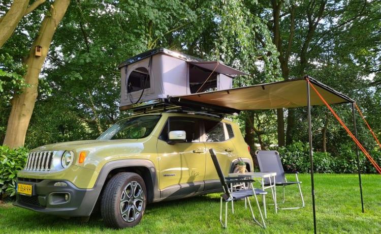 Stoere Jeep Renegade met daktent en keuken