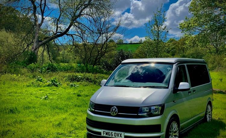 Lola D'Camper – Lola D'Camper – Lovely 4 berth VW campervan – Ready for your next adventure