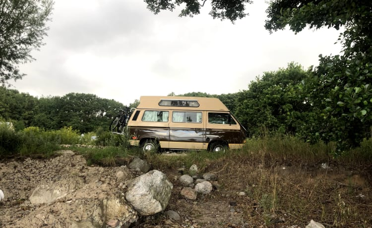 Charlie – Volkswagen T3 Adventurewagon California (importata/automatica)
