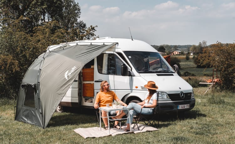 Irma – Travel in style with our Mercedes Sprinter