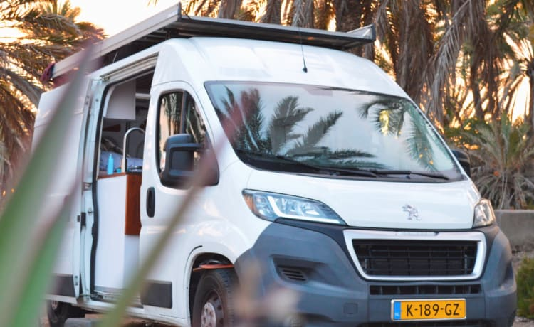 Driving Dutch Van – Stylish off-grid camper with large fixed bed and warm outdoor shower!!
