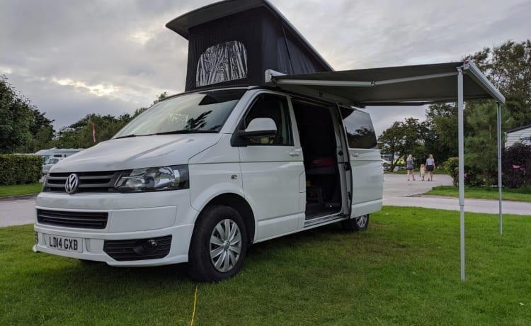 Lady – 2-4 Ligplaats 2014 VW Camper
