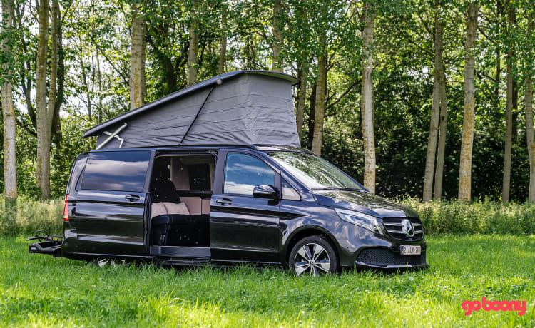 Marco Polo – Nieuwe luxe camperbus - Mercedes Benz - 2 tot 4 pers.