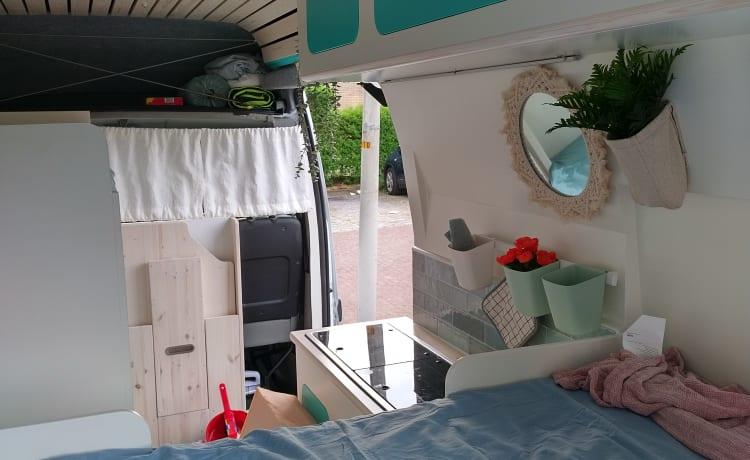Renault camper van with 4 sleeping places