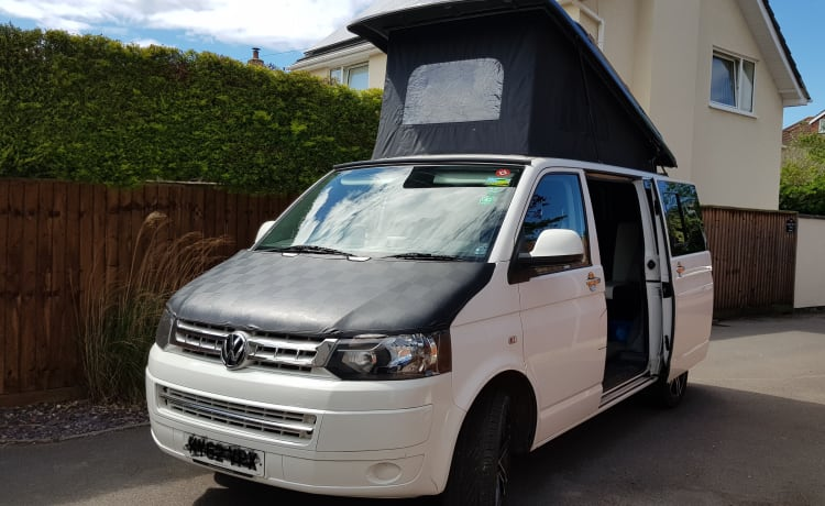 Elvis – VW T5 Located in West Country