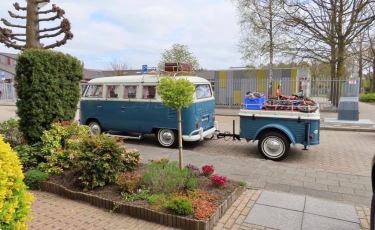 Arie – Volkswagen T1 Camper