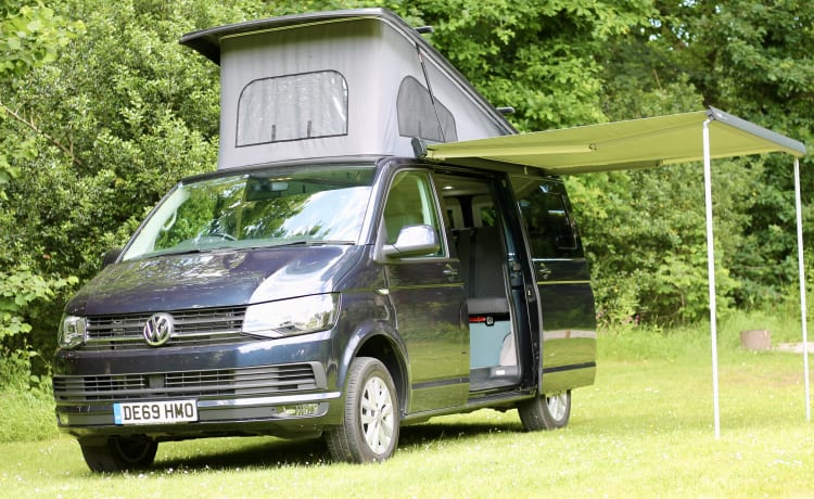 Ruthern –  VW T6  beautifully converted by Ecowagon.  Pitch available