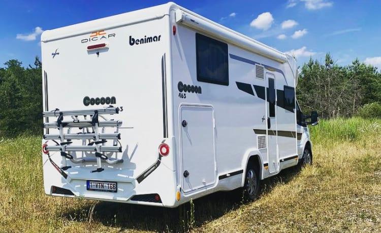 Benimar Cocoon 463 Automatic 'Exquisite'