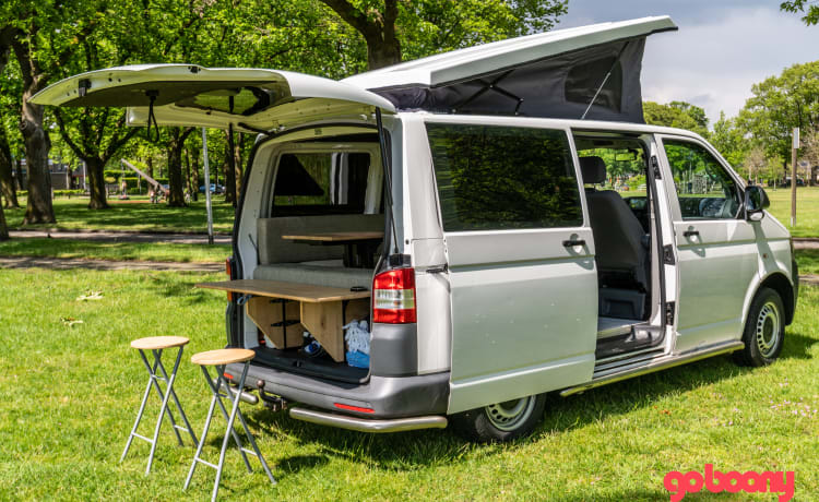 Volkswagen camper T5
