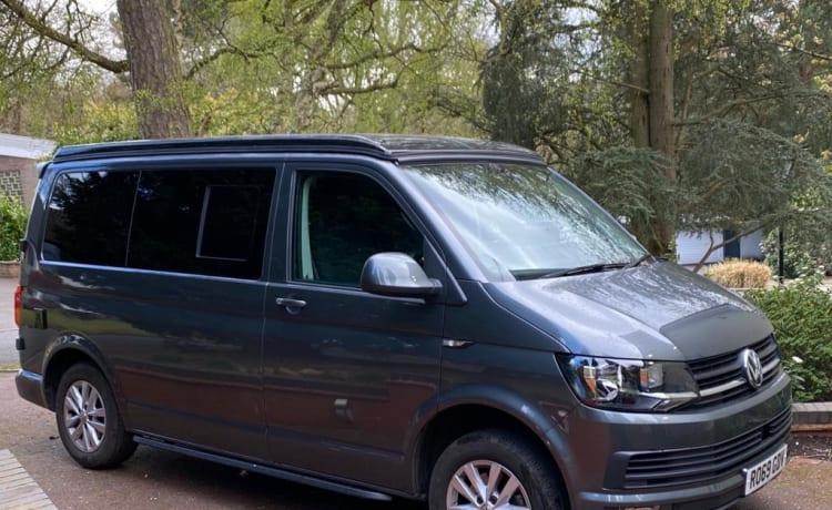 Romeo – 2019 VW T6-camper