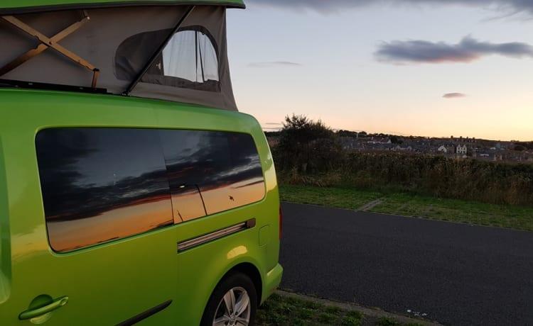 Green  – 2 Berth Mini Camper