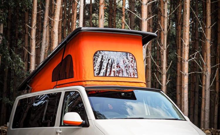 Wilbur – VW T6 Campervan New Conversion Full Insurance inc.