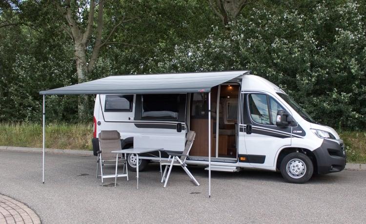 malibuutvrij – bus camper from top segment