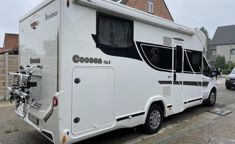 benimar cocoon 463 2021 new