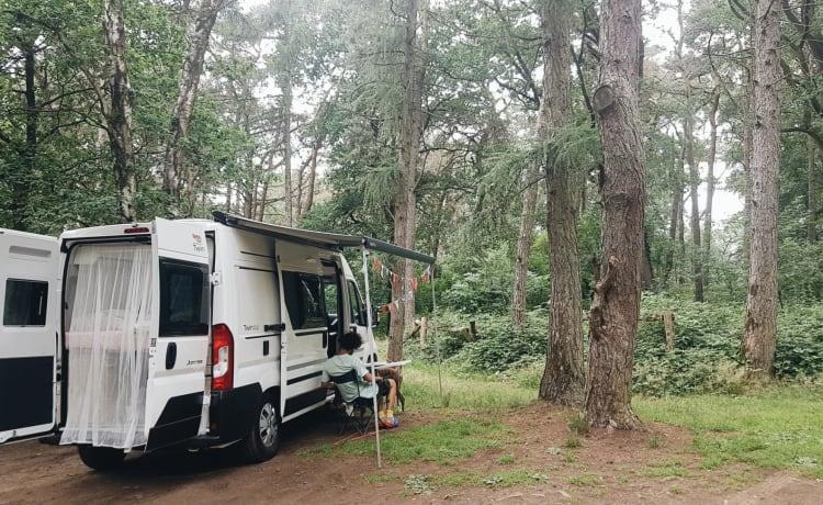 Camper Donny (2021 - Adria Twin)