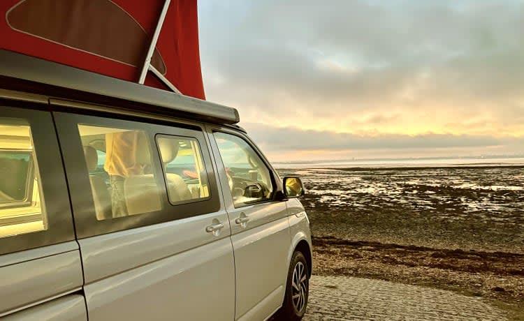 Grace  – VW Oceaan