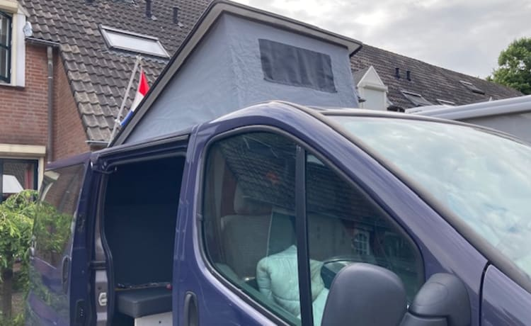 Bel camper bus in affitto