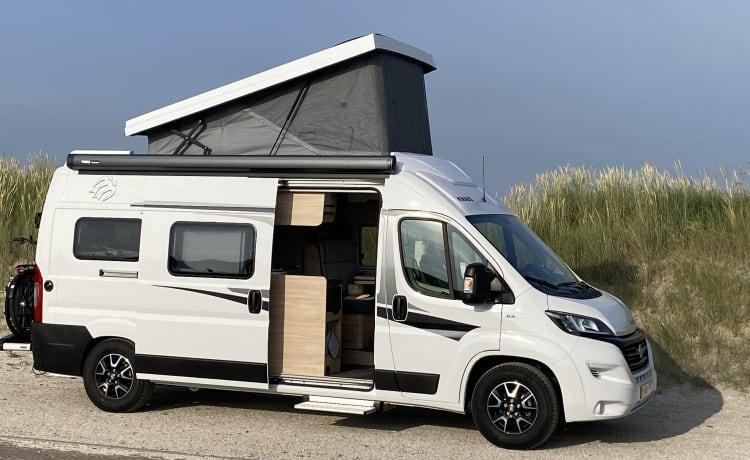 Brand new Knaus Boxstar with loft allure