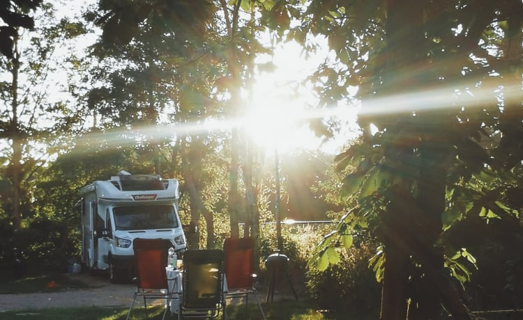 Camper Bobby – Brand new Challenger with complete furniture & WiFi