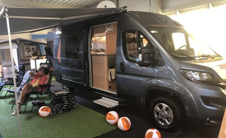 Full optie luxe camperbus bouwjaar 2019 voor 2 personen