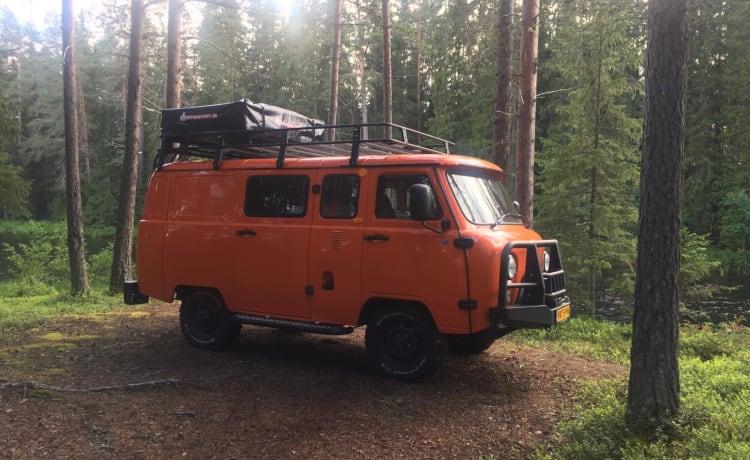 Willem – Op avontuur met de Bukhanka Expedition bus camper