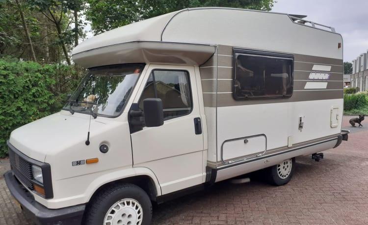 Cato – Compacte en gezellige camper met veel ruimte!