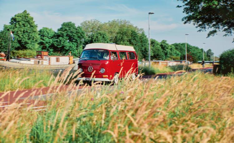 evan – Mariquita ⚡️ elektrische VW T2