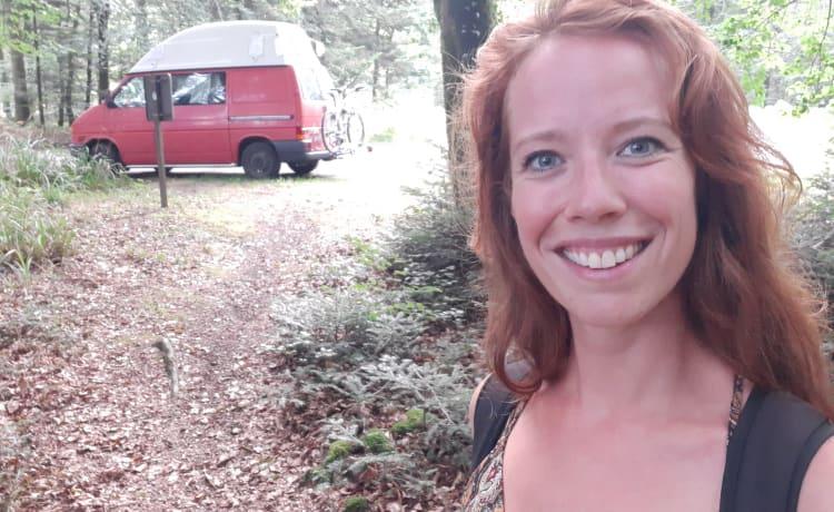Herman – VW transporter red camper