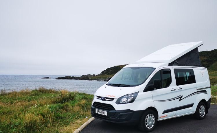 Firefly – Firefly Ford Transit Van 2015