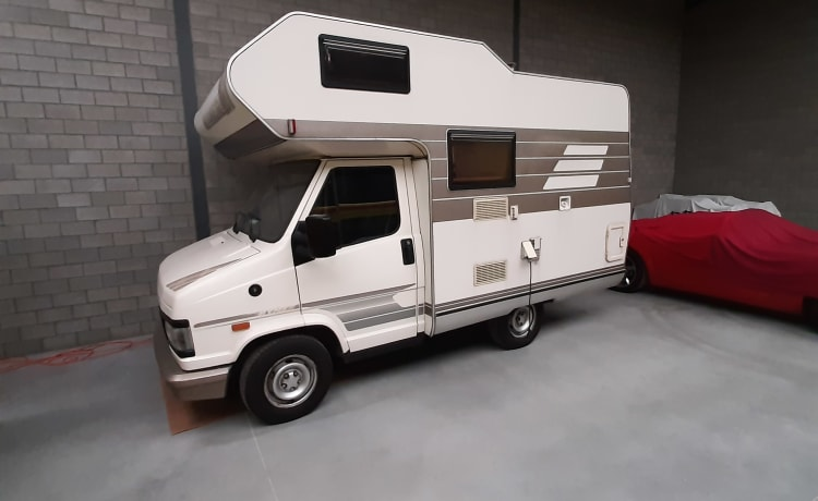 Smurfje  – Hymer 4 pers