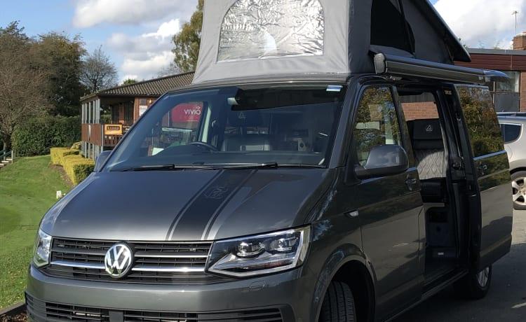 Bertie – VW Transporter T6 4-persoons camper
